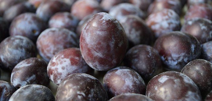 Што може да ви се случи ако јадете 12 сливи дневно